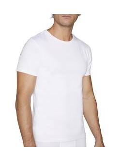 Camiseta manga corta C/R