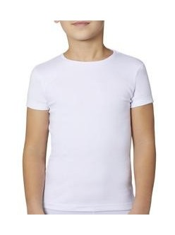 Camiseta M/C niño