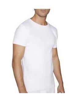 Camiseta afelpada M/C C/R